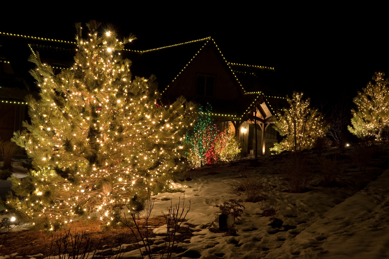 light up greater vancouver with our christmas lights