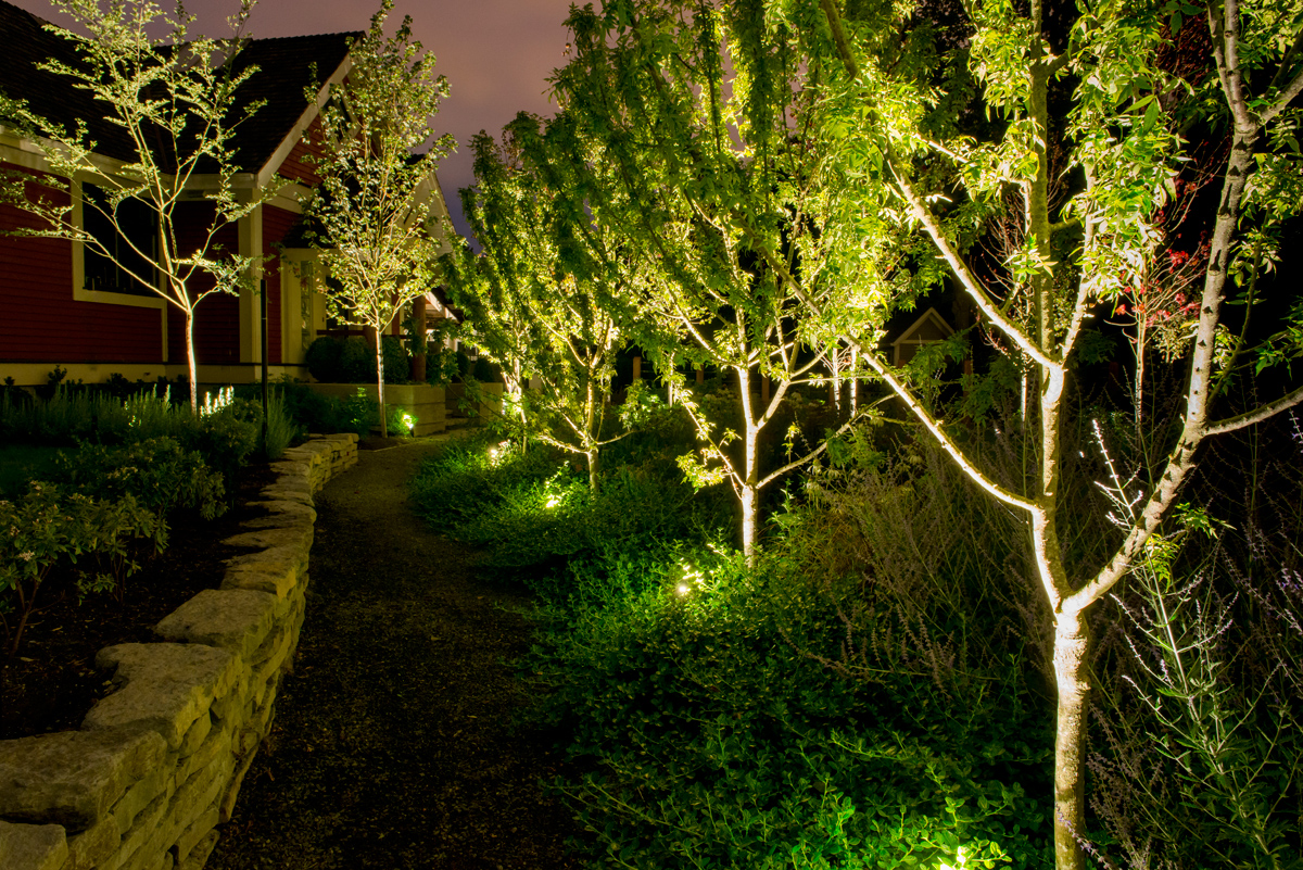 Garden Watering System >> Landscape Lighting for Your Vancouver Property